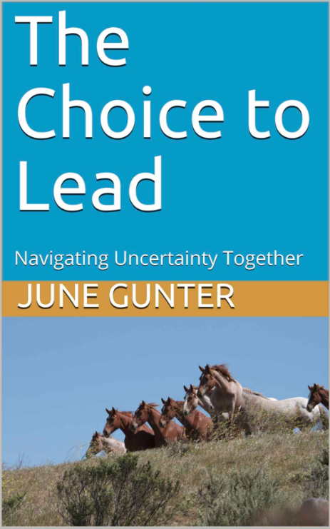 The Choice to Lead - Navigating Uncertainty Together by June Gunter